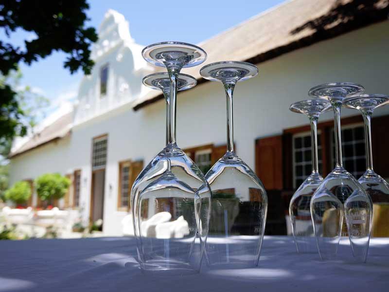 Testa vin i Sydafrika